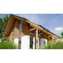Lauko medienos priežiūra